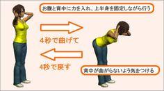 グッドモーニング エクササイズ - 太もも後部にあるハムストリングに強い刺激を与える事ができ、その他にも腰の部分にある脊柱起立筋や臀部にある大殿筋などを鍛える事ができます。