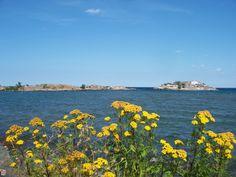 Picnic Rocks, Lake Superior, Marquette, MI