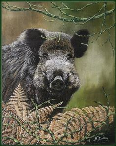 PAINTINGS BOAR - Szukaj w Google