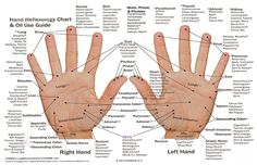 Alternative medicine has a lot to say when it comes to solving chronic pain and discomfort in various parts of the body. While a combination of traditional Western medicine and alternative medicine is the best method overall, looking at the health benefits of alternative forms of pain resolution, like reflexology, can be considered worthwhile.  …