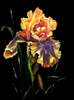Ирис Огонек (масло, замша) - Изобразительное искусство - Масло, акрил Ribbon Art, Flower Art, Peonies, Iris, Flora, Painting, Plants, Design, Art Floral