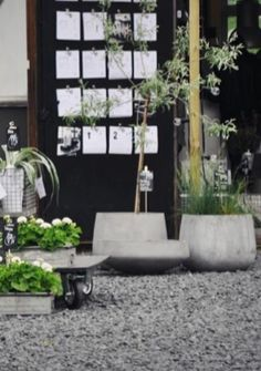Concrete planters at a stylish garden centre
