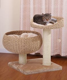 Cozy Lounger Cat Bed Tree #zulily #zulilyfinds