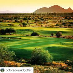 #Repost @coloradoavidgolfer with @repostapp.  Courses we love: @talkingstickgc in Scottsdale Arizona.  #talkingstick #rockies #springtraining #arizona #cactusleague #golfcourses #golf #azgolf #arizonagolf #desertgolf #scottsdale #scottsdalegolf #courseswelove #golfporn #instagolf #GolfandGrow #AZGolf