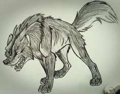 Have an angry Wolf