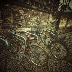 Con agua las bicis aparcadas. #zaragozadestino http://instagram.com/unaimensuro