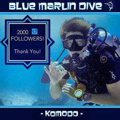 Thanks so much for following #BlueMarlinKomodo. Hope your are loving the diving/travel inspiration! If you can't get enough of our feed check out our sister feeds: @bluemarlingilit @bluemarlinmeno @bluemarlinair @bluemarlinlombok