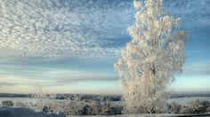 desktop wallpaper winter nature 3840x2160