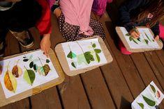 Listová leporela | Učíme venku Fine Art Drawing, Art Drawings, Plastic Cutting Board, Activities For Kids, Kindergarten, Art For Toddlers, Autumn Art, Manualidades, Ideas