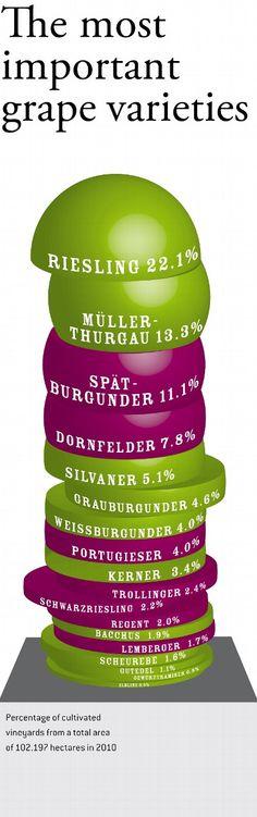 Deutschlands wichtigste Rebsorten - The most important grape varieties  Copyright: www.deutscheweine.de