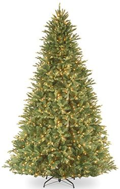 National Tree 'Feel-Real' Tiffany Fir Hinged Tree with 1050 Clear Lights, 9-Feet >>> Check this awesome image @