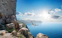 Scarica sfondi rocce, gabbiani, mare, costa, cielo blu, estate