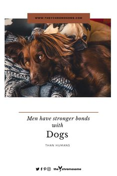 The bond we share with our pets is incomparable. From loving them to taking care pets are our children. Here's why men have Stronger emotional bonds with dogs than humans. Insecure People, Success And Failure, Your Dog, Bond, Old Things, How Are You Feeling, Strong, Pets, Friends