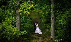 #valokuvaaja #hääkuvaaja #hääkuvaajaturku #häät2018 #häät2019 #destinationphogography #ristokuitunen #weddingphotography #igkuvaajat #beloved #love #portrait #belovedstories #potrettikuvaus #ammattikuvaaja #potrettikuvaaja #summerwedding #happymoment #bride #groom Trunks, Plants, Drift Wood, Tree Trunks, Plant, Planets