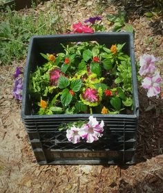 Milk crate flower container