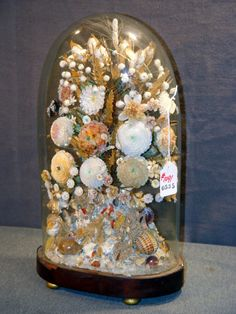 """VICTORIAN GLASS DOME WITH SEA SHELL, FLOWER, AND LEAF ARRANGEMENT. 18"""" HIGH"""