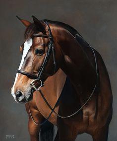 Work — Meghan Bacso Equestrian Portrait Artist