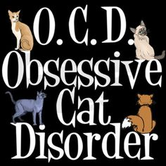 do you have OCD?