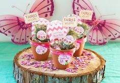 Fairy Garden Kit Favors