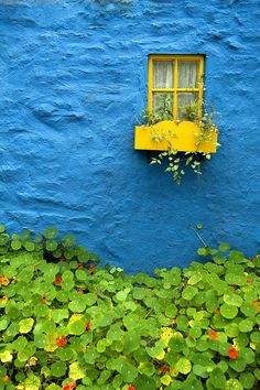 Ireland Photograph - Blue Yellow by Christopher Brown