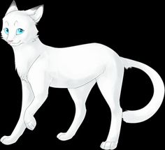 Frostfur- Senior queen of Thunderclan