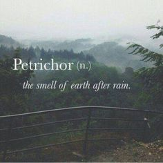 Petrichor. Love that. the smell of earth after rain - one the most nostalgic…