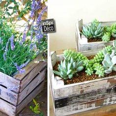 mini-jardiniere-cagette-en-bois