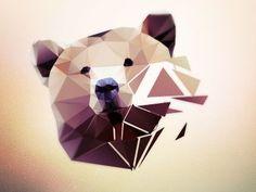 poly bear