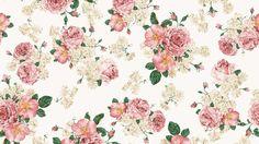 Download Bilder für das Handy: Pflanzen, Blumen, Hintergrund ...