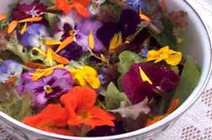 Hortas organicas e alimentacao saudavel.: Flores comestiveis