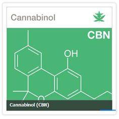 La Marijuana medicinal contiene más de 400 compuestos químicos diferentes, de los cuales 80 de ellos sólo se encuentran en el cannabis.