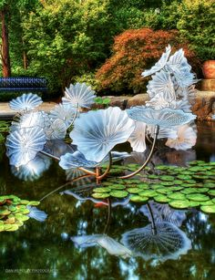 Beautiful HDR shot of one of the glass sculptures by Chihuly on display at the Arboretum in Dallas, Texas.