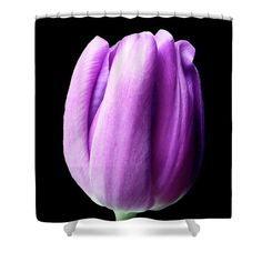 A beautiful #showercurtain for your #bathroom. Also great #giftidea to your friend or realtive. #Christmas #Christmasgift #tulip