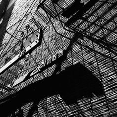 A city wall with fire escape and shadows. Untitled, April 20, 1956