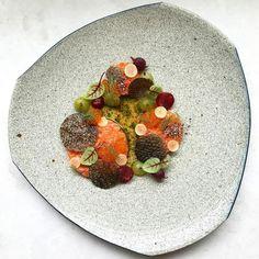 """Plaa Salmon"" | Salmon tartare, crisp salmon skin, pink and green currants, lemongrass, roasted riceberry, lime/fish sauce and mint oil • พล่าปลาแซลมอน"