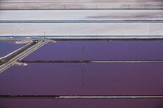 by Julieanne Kost / San Francisco Bay - Purple