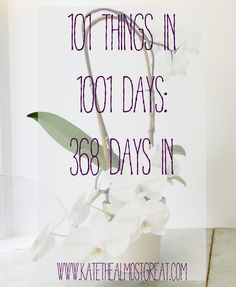 101 things to do in 1001 days: 368 days in
