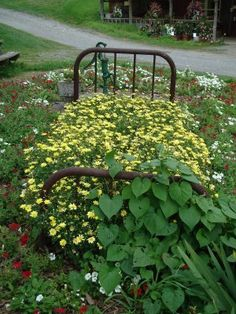 """""""A sunny flower bed near the farm store invites you for an afternoon nap."""""""