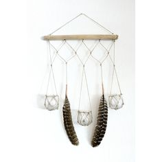 Boho Chic Macrame Driftwood Hanger -- perfect for airplants!