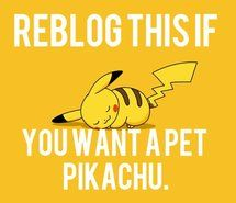 Inspiring picture pet, pikachu, pokemon