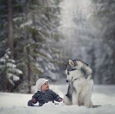 Tag someone you love 💙 Via Cute friends playing in snow ~ Photograph By Snow Photography, Animal Photography, Amazing Photography, N Animals, Animals For Kids, Cute Animals, Animal Tv, Winter Pictures, Cute Friends