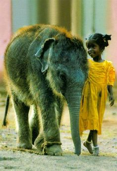 Indian Child with Elephant...friends  MATIN LUMINEUX
