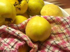 Eingekocht - Rezepte zur Komplettverwertung von Quitte & Apfel: Quittenlikör, Quittengelee, Quittenkompott, Quittensirup, Apfelmus, Apfelgelee, Apfelsirup...