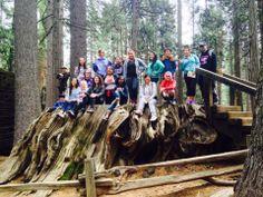 A wonderful weekend at Calaveras Big Trees State Park. #ScienceAmbassador