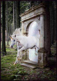 Unicorn and portal