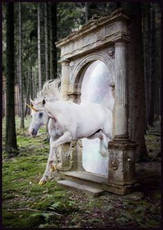 Unicorn and portal