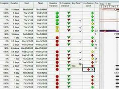 Microsoft Project: Using Graphical Indicators