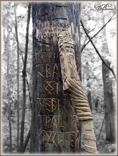 Warning tree in the forest when Cassie is trekking with Alarik and Ragnar.