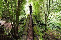 SIARAM :: Aquedutos da Janela do Inferno, Sao Miguel Island, Azores, Portugal