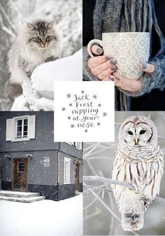 moodboard - winter grey